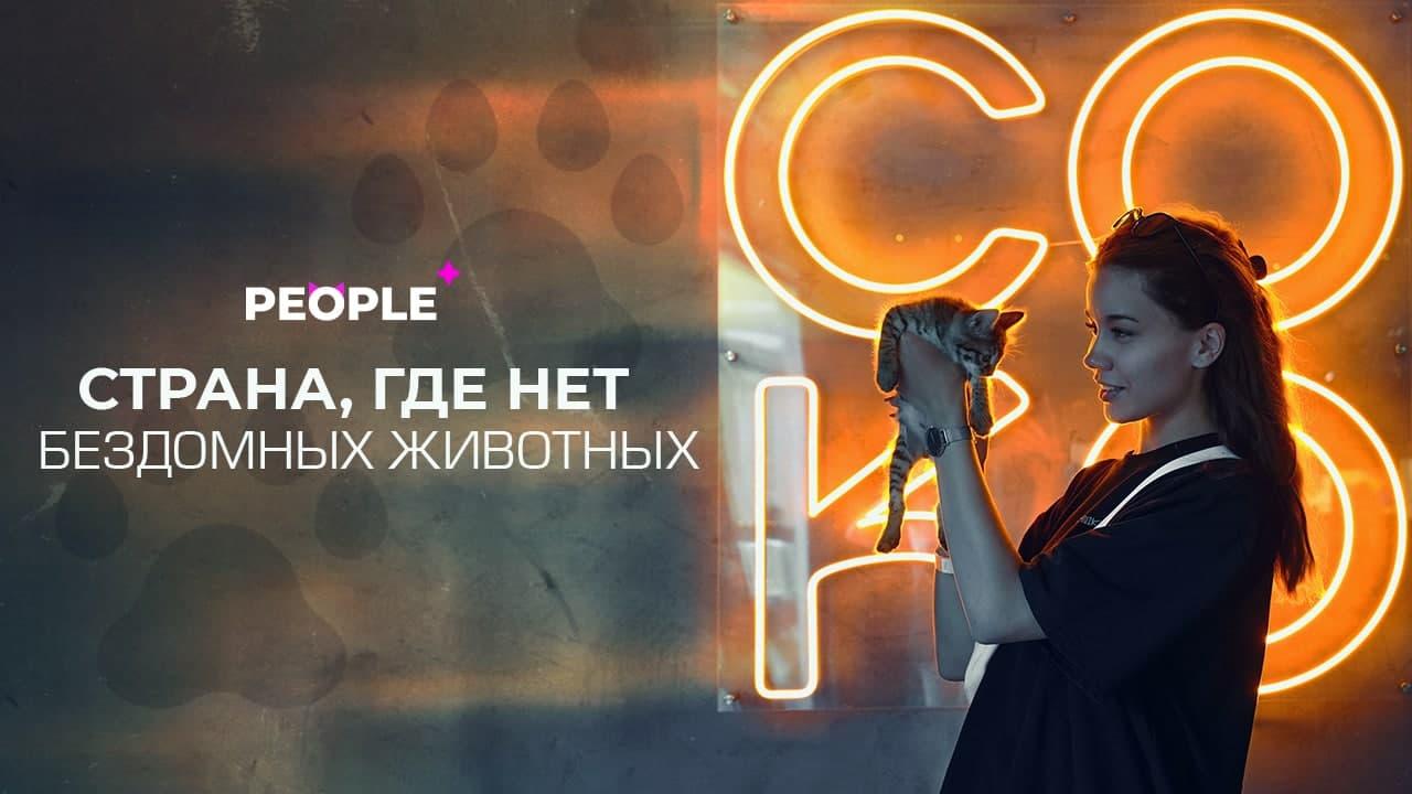 Аукцион картин и пушистые хвостики: как прошёл фестиваль «СОКО-фест» в поддержку бездомных животных в Ташкенте